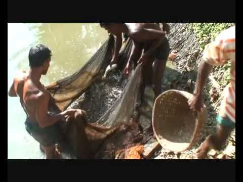 sylhet fishing