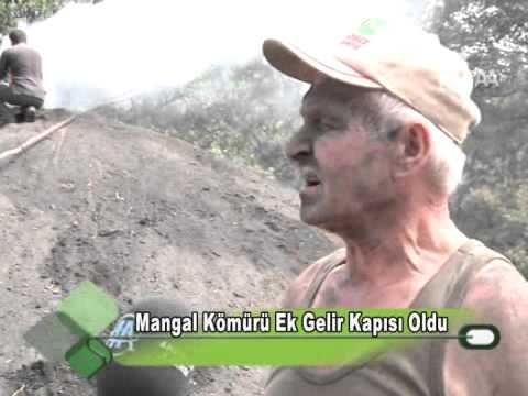 Mangal Kömürü Ek Gelir Kapısı Oldu 05.10.2001.wmv