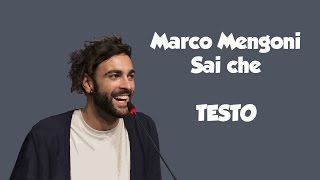 (Testo/Lyrics) Marco Mengoni - Sai che (cover degli Over The Moon)