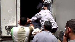 Dúvidas sobre circunstâncias da morte de prisioneiros no Egipto
