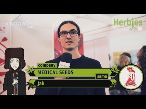 Medical Seeds @ Cannafest 2014