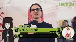 Medical Seeds @ Cannafest 2014 Prague