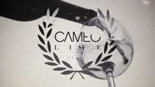 THE CAMEO LIFE - LADIES LOVE WINE #LLW PROMO - FEB 2 2013