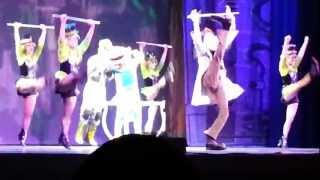 Phineas and Ferb live