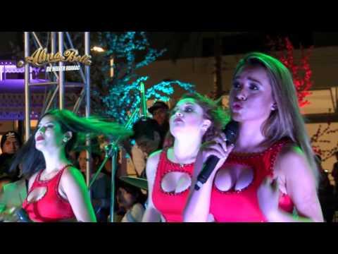 No Voy A Llorar de Las Karibenas Letra y Video