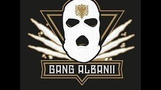Gang Albanii - After Party (Instrumental Remake)
