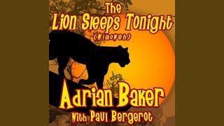 The Lion Sleeps Tonight (Wimoweh) (feat. Paul Bergerot)