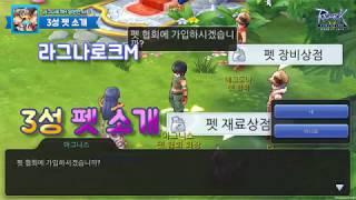 라그나로크M - 3성 펫 소개