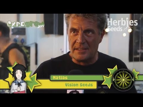 Vision Seeds @ Expo Grow 2014 (ESP)