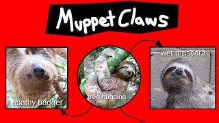 Muppet Claws Explained