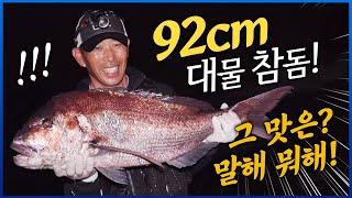 평생 한번 볼까 말까 한 엄청난 크기의 대물 참돔! 특이하게 잡자마자 비늘과 내장 제거? #참돔 #대물참돔회 #92CM참돔 #제주도 [4K] 다시보기