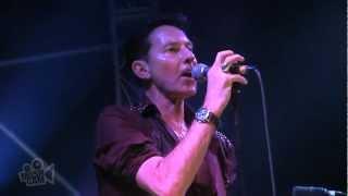 International Swingers - Jealous (Gene Loves Jezebel) (Live in Sydney) | Moshcam