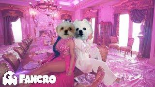 KAROL G, Nicki Minaj - Tusa (Cover Perros)