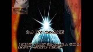Thema: DJ Ny-snake- I Don't Want To Miss A Thing( dj ny-snake Hands up remix  2015
