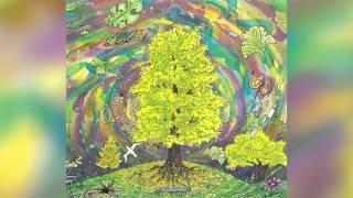 14. EnSecreto - Aromo amarillo (Dj ST)