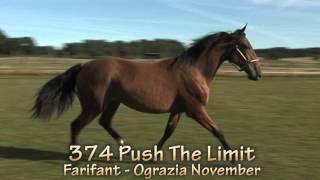 374 Push The Limit