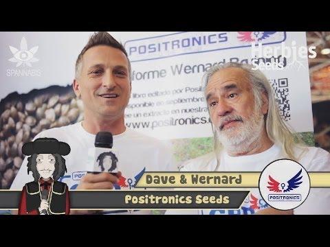 Positronics Seeds @ Spannabis 2014 Barcelona
