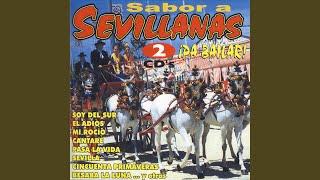 Sevillana 4: Anhelos - Ese Lunes Del Rocio - Vive La Vida - Celos