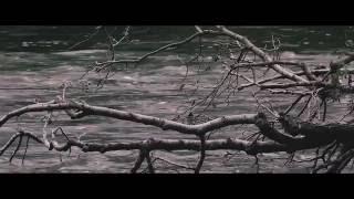 Nature - (Daniel Spaleniak - BACK HOME feat Katarzyna Kowalczyk Coals)