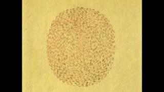 Devendra Banhart - Little yellow spider