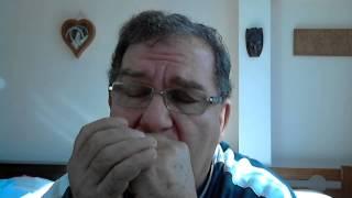 Fur Elise - harmonica, Beethoven