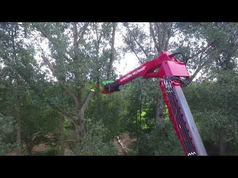 Renovatie natuurgebied Kampina, langs rivier De Beerze - Video 1
