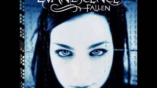 Taking Over Me-Evanescence