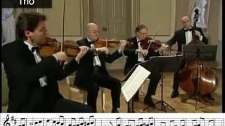 Minuet and Trio Form Eine Kleine Nachtmusik