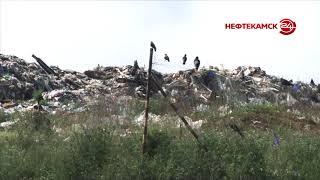 Утилизацией мусора в Нефтекамске займется новая компания