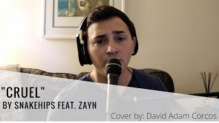 CRUEL by Snakehips feat. ZAYN | Cover by David Adam Corcos