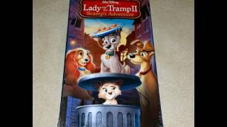 Proof That There Is A 2006 VHS Of Lady And The Tramp II:Scamp's Adventure