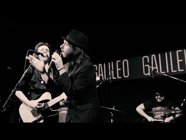Video oficial de Gatoperro en directo