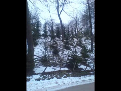 dakota-suite-wintersong-yanpotocki