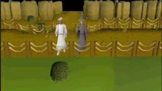 Eye Of The Tiger -- Runescape Style