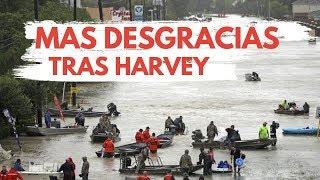 Impactante video de los rescates de damnificados  causado por el huracan harvey America Hoy