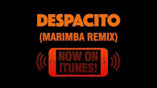 "Despacito ""marimba"" remix"