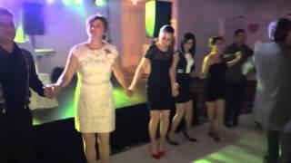 Sorin Banulescu Live hora Nunta Bucuresti