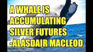 A Whale is Accumulating Silver Futures   Alasdair Macleod