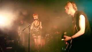 Blue Void - Animal - Live Batofar