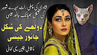 Animal Husband    Ek Na Kabil e Yakeen Sachi Kahani    Urdu Kahani   