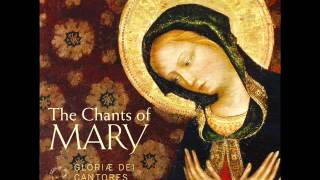 """Gregorian Chant - Salve Regina (Solemn tone) from """"The Chants of Mary"""""""