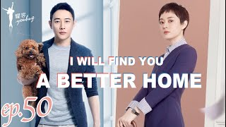 【安家 I will find you a better home】 Ep50 职场女王孙俪vs佛系店长罗晋