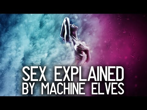 Download Video Human Sexuality Explained By Machine Elves