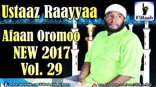Raayyaa Abbaa Maccaa Vol. 29 | NEW 2017 Nashidaa Afaan Oromo