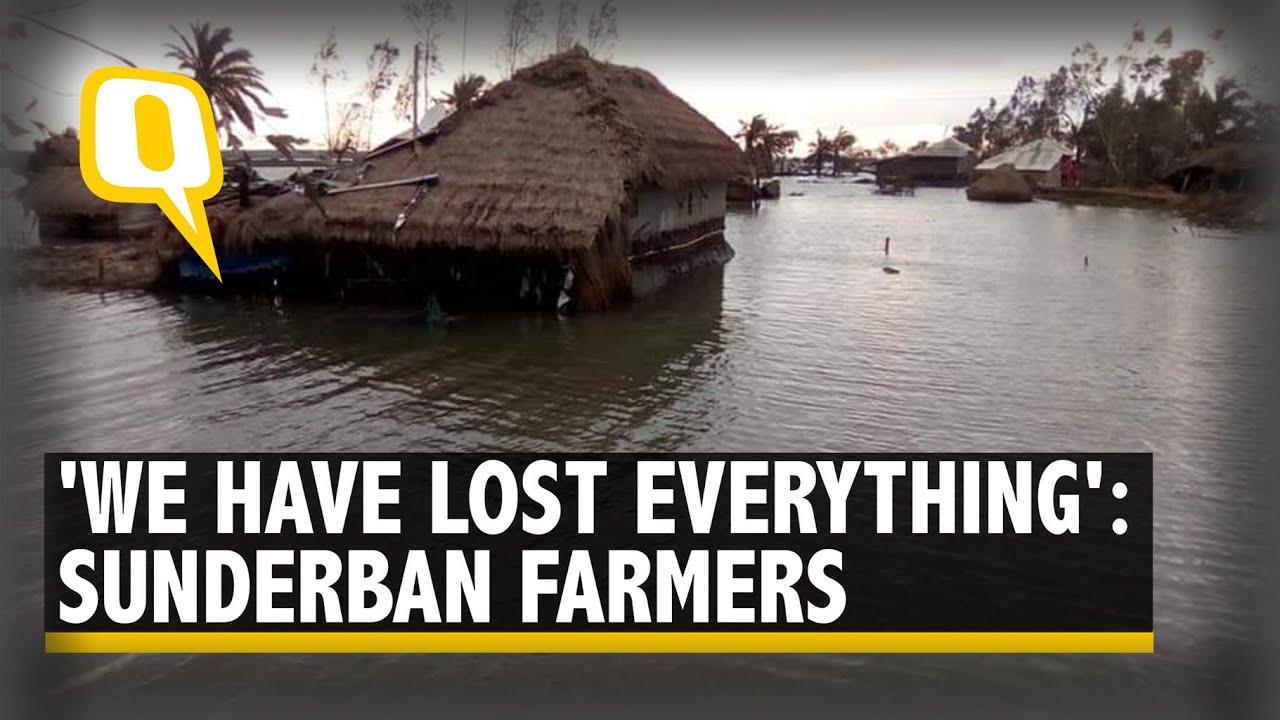 Crops Damaged, Land Infertile & Livelihoods Lost