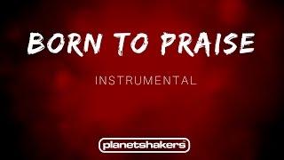 Born To Praise  - Planetshakers (Instrumental)