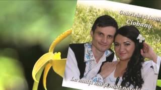 Ionut Ciobanu - Imi place viata la tara (Official Audio) NOU