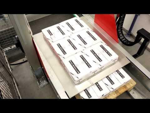 Verpackungsanlage mit Lagenpalettierer