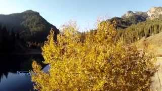 Giovanni Marradi - Alpine Breeze
