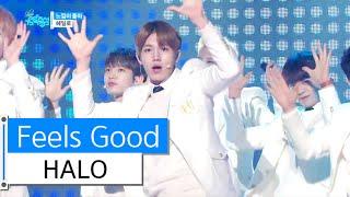 [HOT] HALO - Feel So Good, 헤일로 - 느낌이 좋아, Show Music core 20160109